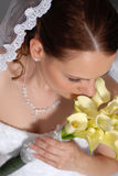Beautiful Bride. Beautiful young bride looks at the camera stock photo