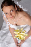 Beautiful Bride. Beautiful young bride looks at the camera and smiles royalty free stock image
