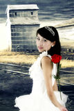A beautiful bride Royalty Free Stock Photos