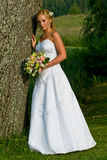 Beautiful Bride. A beautiful bride posing near a tree in her glamorous white gown Royalty Free Stock Images