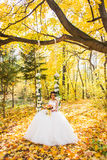 Beautiful bride in the autumn park Royalty Free Stock Images
