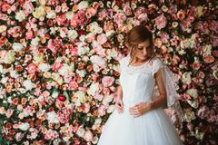 Beautiful bride on the background of a wall of flowers.  Royalty Free Stock Photography