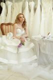 Beautiful bride on background of wedding dres Royalty Free Stock Photo