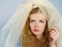 Beautiful bride with the big veil on a head Royalty Free Stock Image
