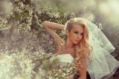 Beautiful bride blonde female model in amazing wedding dress poses Stock Images