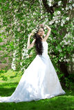Beautiful bride in a blossoming garden Royalty Free Stock Images