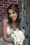Beautiful bride Stock Image