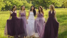 Beautiful bride and bridemaids in purple dresses walking in the park or garden holding hands and laughing in the evening stock footage