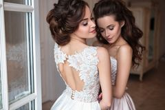 Beautiful bride and bridesmaids in luxury dresses. Twins young women in wedding photosession stock photos