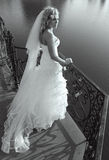 Beautiful bride on bridge Royalty Free Stock Image