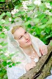 Beautiful bride closeup Stock Photos