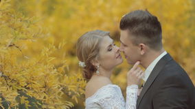 Beautiful bride corrects bow tie groom and they stock footage