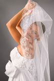 Beautiful bride covered under a veil in studio Stock Photo