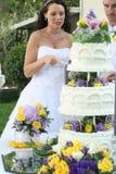 Beautiful bride cutting cake royalty free stock image