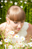 Beautiful bride in daisies Royalty Free Stock Images