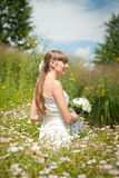 Beautiful bride in daisies Royalty Free Stock Image