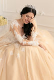 Beautiful bride with dark hair in luxurious wedding dress. Fashion interior photo of gorgeous sensual woman with dark hair in luxurious wedding dress Royalty Free Stock Images