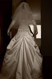 Beautiful bride dress and arms down. Beautiful bride dress, her back and arms down Stock Photo