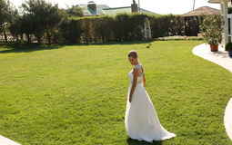 Beautiful bride in elegant dress posing on lawn Royalty Free Stock Images