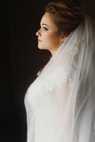 Beautiful bride elegant portrait in the morning soft light. sens Royalty Free Stock Photography