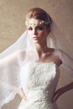 Beautiful bride with fashion wedding hairstyle. Classic White Ve Stock Images
