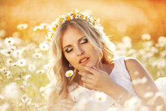 Beautiful bride in a field Stock Photography