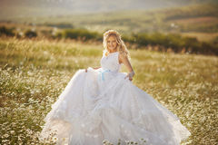 Beautiful bride in a field Stock Photo