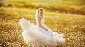 Beautiful bride in a field Stock Photos