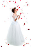 Beautiful  bride on  floor among red rose petals. Beautiful sexy bride on  floor among red rose petals on white background Royalty Free Stock Photo