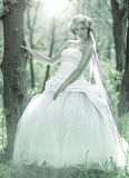 Beautiful bride , flower tiara on her head , relying on the tree , monochrome Royalty Free Stock Photos