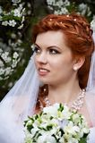 Beautiful bride and flowers Royalty Free Stock Image