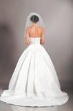 Beautiful bride on grey background Stock Photo