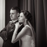 A beautiful bride and groom. Portrait of beautiful bride and groom Royalty Free Stock Photography