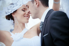 A beautiful bride and groom Royalty Free Stock Image