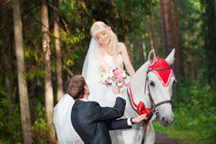 Beautiful bride and groom on horseback Stock Photos