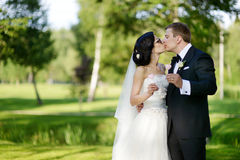 Beautiful bride and groom Stock Image