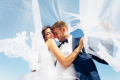 The beautiful bride and groom. The bride and groom are laughing under the veil Stock Image