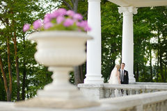 Beautiful bride and groom Royalty Free Stock Images
