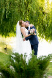 Beautiful bride and groom passionately kissing under tree Stock Photography