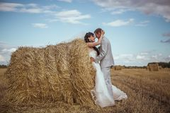 Beautiful bride and groom portrait in nature Stock Photos