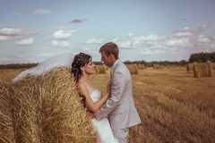 Beautiful bride and groom portrait in nature. Beautiful bride and groom portrait in  nature Stock Image