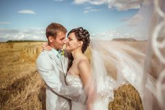 Beautiful bride and groom portrait in nature. Beautiful bride and groom portrait in  nature Royalty Free Stock Image