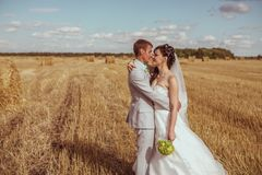 Beautiful bride and groom portrait in nature. Beautiful bride and groom portrait in  nature Stock Photography