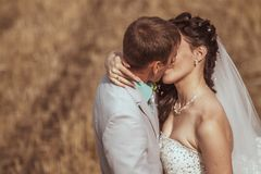 Beautiful bride and groom portrait in nature. Beautiful bride and groom portrait in  nature Stock Images