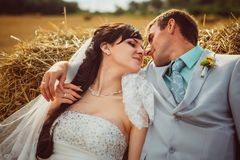 Beautiful bride and groom portrait in nature. Beautiful bride and groom portrait in  nature Stock Photos