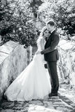 Beautiful bride and groom portrait in nature Royalty Free Stock Photo