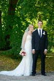 Beautiful bride and groom Royalty Free Stock Image
