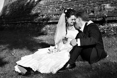Beautiful bride and groom sit on the grass Royalty Free Stock Photos