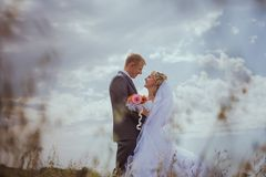 Beautiful bride and groom standing in grass and kissing. Wedding couple fashion shoot. Stock Photography