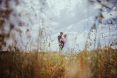 Beautiful bride and groom standing in grass and kissing. Wedding couple fashion shoot. Stock Photo